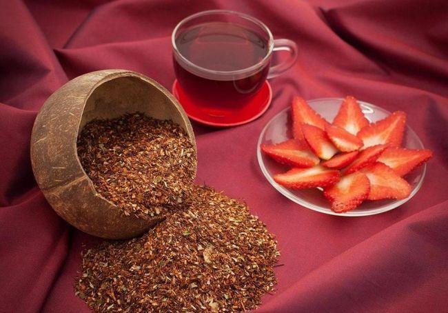 Чай ройбуш: польза и вред