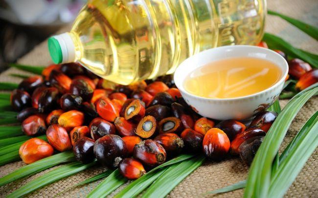 Чем опасно пальмовое масло для организма