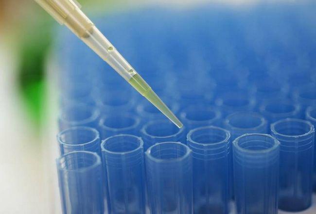 Имплантация эмбриона: признаки, ощущения, сроки