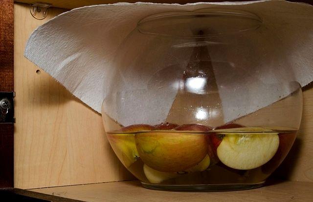 Домашний рецепт уксуса из яблок