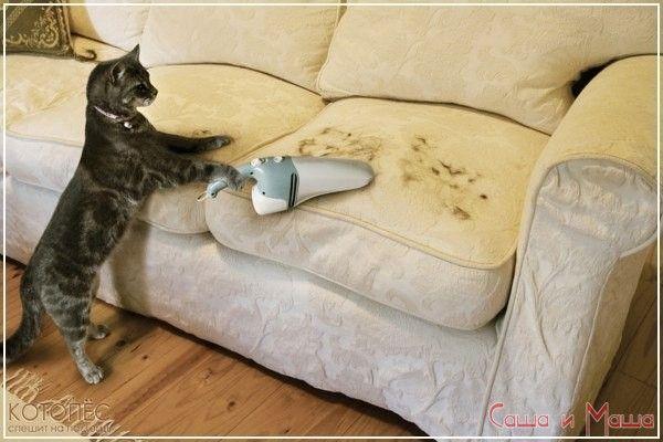 Как избавиться от запаха на диване