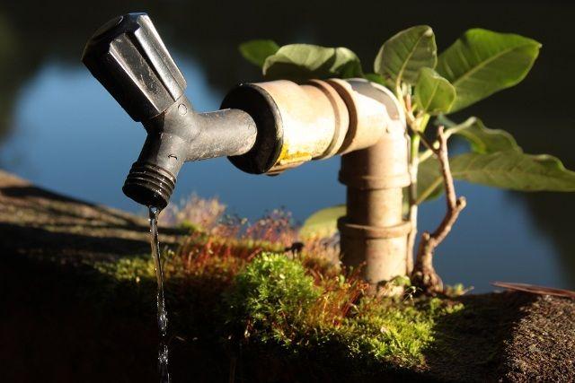 Какую воду лучше пить - кипяченую или сырую?