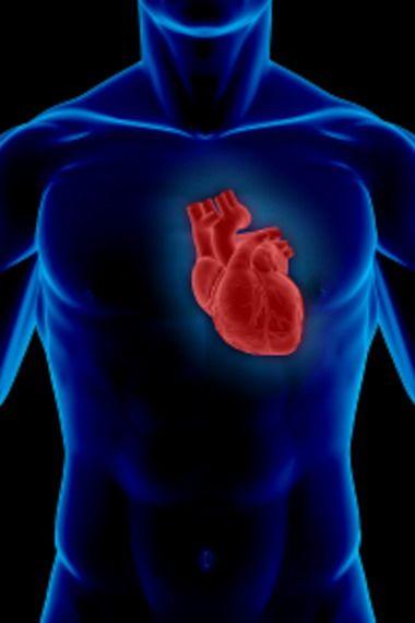Комплекс упражнений для профилактики заболеваний сердца и сосудов