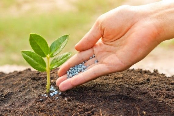 Минеральные удобрения, их виды и характеристики