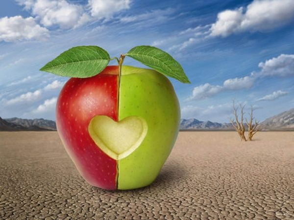 половинка яблока