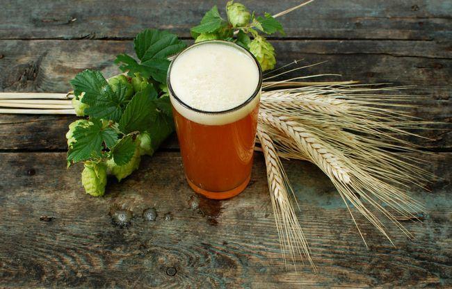 пиво на хмелю