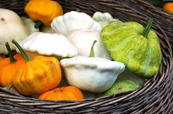 Патиссоны на зиму: соленья, в маринаде, икра и даже компоты и варенье
