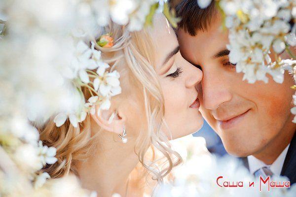 подробный план подготовки к свадьбе