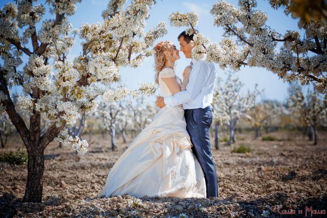 Причины свадьбы
