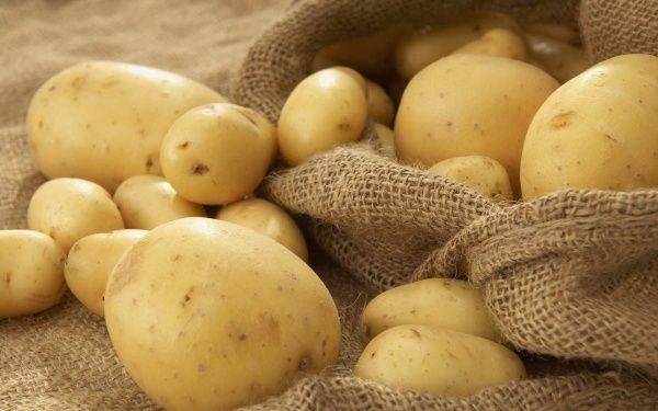 Применение минеральных удобрений для картофеля