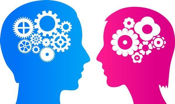 Различие мужского и женского мышления