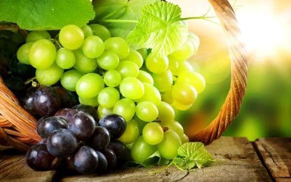 Рецепты вкусных заготовок из винограда на зиму: вино, компот, сок, желе и даже маринованный виноград