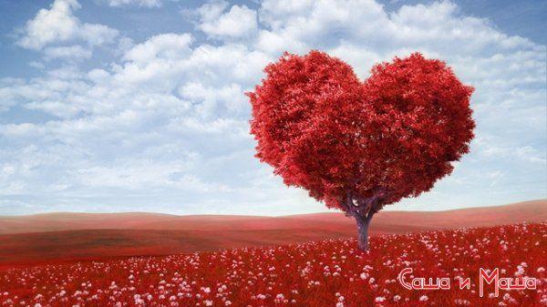 Советы как найти свою любовь