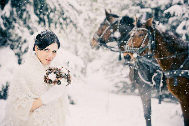 невеста рядом с лошадьми