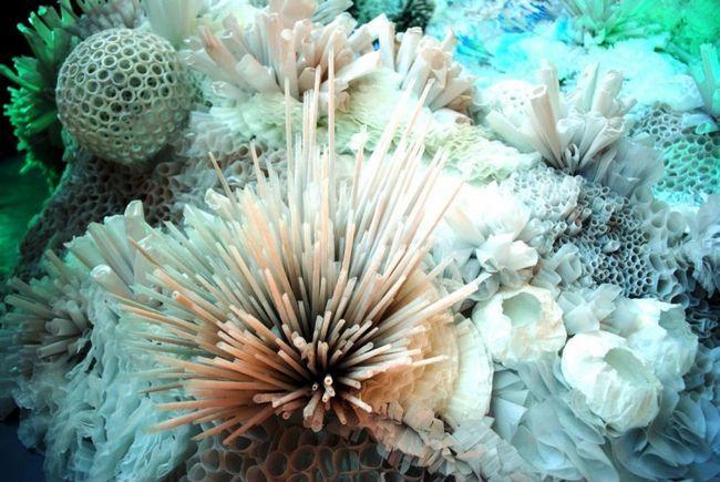 Морские полипы