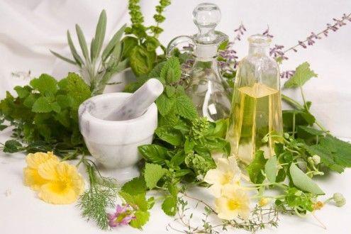 лечебные травы для укрепления волос