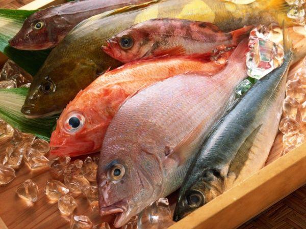 Выбираем качественную рыбу